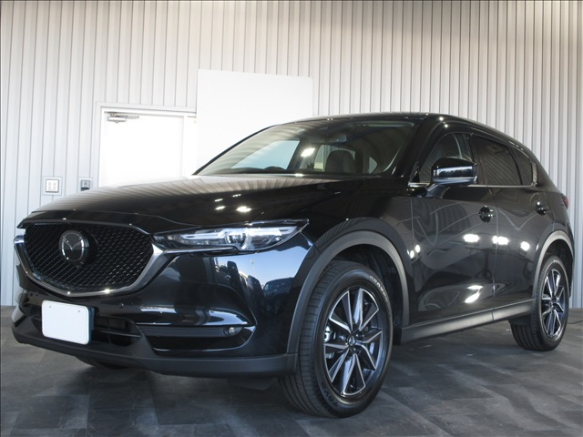 CX-525S L Packageの画像